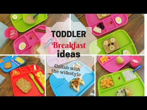 5 BREAKFAST IDEAS FOR TODDLERS / TODDLER MEAL IDEAS / COLLAB WITH THE WIFESTYLE