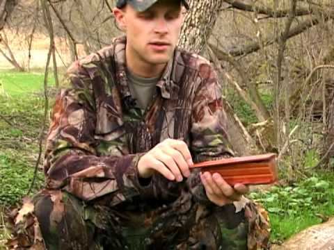 How To Use a Box Call Turkey Hunting