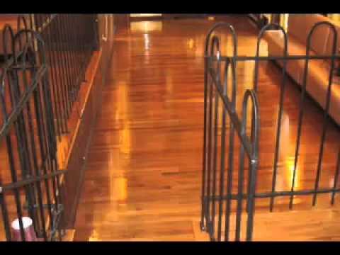 Wood Floor Refinishing -Mr. Sandless