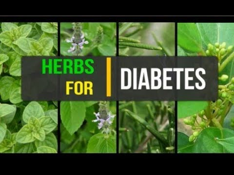 Herbs for diabetes | Herbs that cure Diabetes | Herbs  that lowers blood sugar