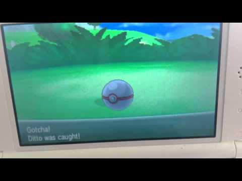 Pokemon X SHINY IMPOSTER DITTO