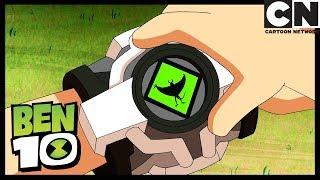 Pollos en Chichen Itza parte 2: Salario del Miedo | Ben 10 en Español Latino | Cartoon Network