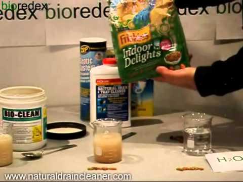 Bio-Clean Eats Cat Food Demo