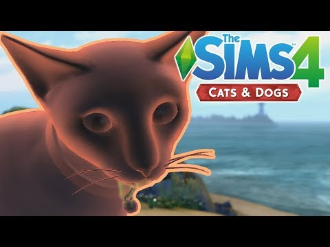GHOST PETS - The Sims 4 Cats and Dogs | Episode 13