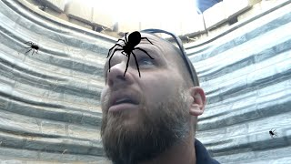Download I FELL IN A BLACK WIDOW NEST!! TRIED TO AVOID A DEADLY BITE! Video