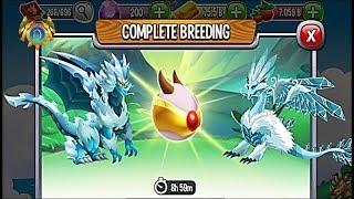 Headstrong Dragon vs Forestry Dragon | Dragon City [RARE BREEDING
