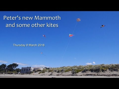 Peter's new Mammoth and some other kites