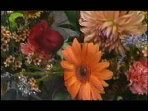 How to Buy Flowers : Keep Your Flowers Healthy & Beautiful