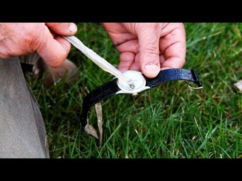 How to Tell Direction Using a Watch   Survival Skills
