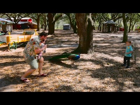 Jack Hanna and Steve Irwin TV Show Spoof - Nature Time with Chris