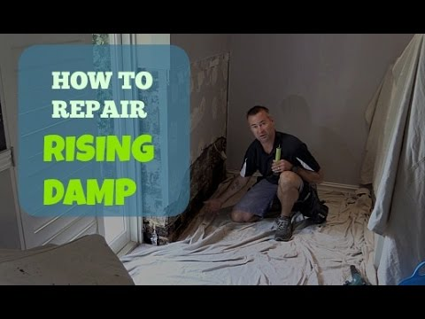 How To Repair Rising Damp In A Wall.