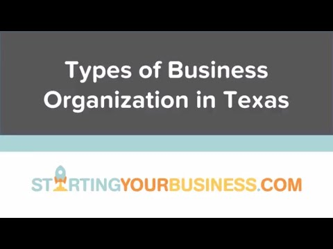 Types of Business Organization in Texas - Starting a Business in Texas