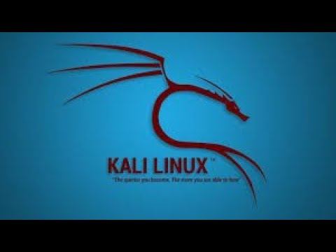 install something ...ANYTHING in Kali Linux terminal