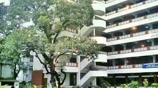 Ideal College Dhanmondi, Memories of Batch 2018