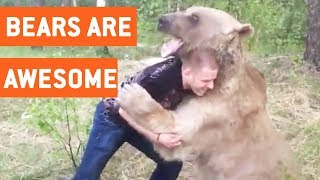 Funny Bears Video Compilation    JukinVideo