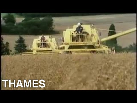 Flour Production | British Farming | Seeing and doing | 1980