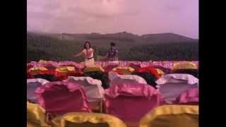 Paatti Sollai Thattathey - Vannathi poochi song