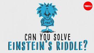 """Can you solve """"Einstein's Riddle""""? - Dan Van der Vieren"""