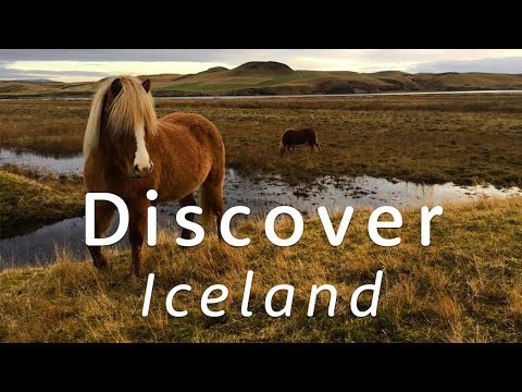 🇮🇸 Discover Iceland 🇮🇸   Travel Better with Holiday Extras!