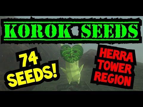 BOTW Hebra Korok Seeds