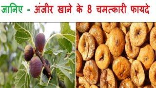 जानिए- अंजीर खाने के 8 चमत्कारी फायदे (Magical Health Benefits of Figs)