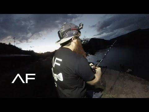 ARIZONA FLATHEAD CATFISH FISHING AND LOSING A BIG BASS!!!! 3K SUBSCRIBERS!!!!!