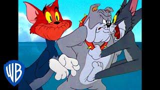 Tom & Jerry   Tom