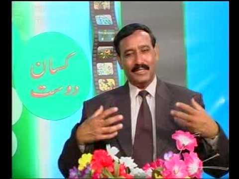 Kissan dost special-2 Pakistan Dr.Ashraf Sahibzada