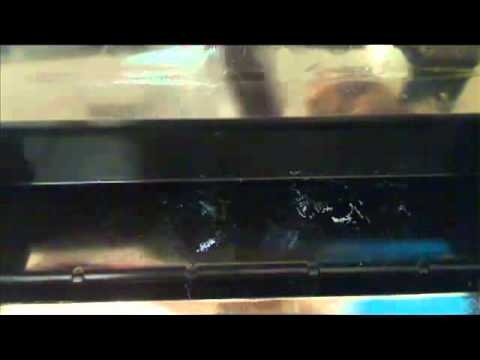 How to Manually Clean the Nozzles on the Print Heads of Brother GT Printer
