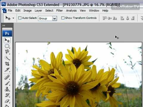 Adjust Image Resolution in Photoshop CS3