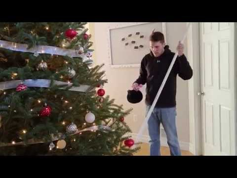How to water your Christmas Tree like a pro