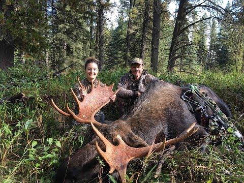 Big Archery Bull Moose (2017) - Small Woman