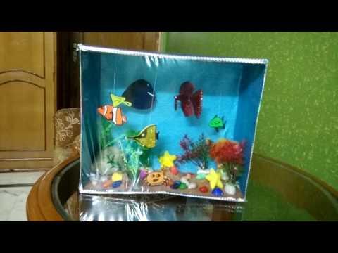 Aquarium using a Shoebox