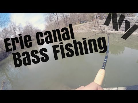 Prespawn Bass Fishing Erie Canal Upstate NY