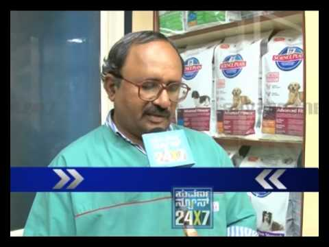 SUVARNA NEWS-TIPS FOR FINDING LOST DOGS-MICRO CHIPS