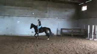 My Sweet Dina