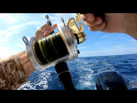 Mahi Mahi {Catch Clean Cook} First day on the new boat!!!