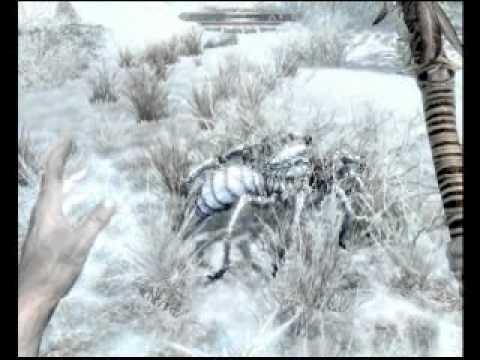 Skyrim, ICE FORM Shout strange bug!
