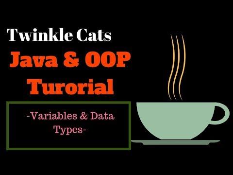 3. Java Basic (Bangla): Variables and Data Types