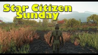 Star Citizen Sunday | Medical Careers, Planet Flora & Stolen Ships are Kept