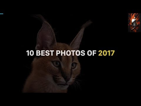 Top 10 photos of 2017 [National Geographic]