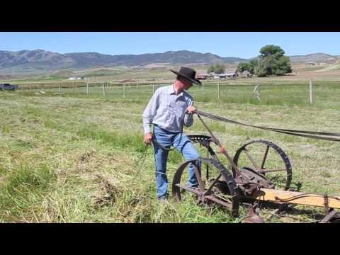 Horse Sickle Mower
