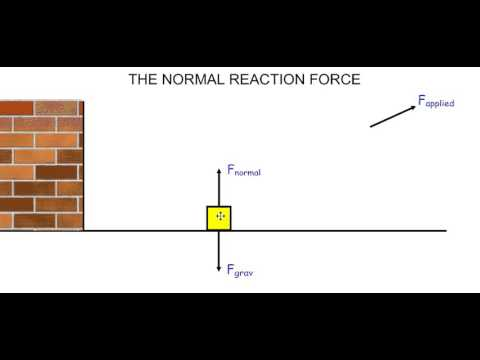 G10 The Normal (Reaction) Force