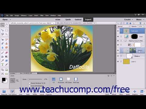 Photoshop Elements 2018 Tutorial Stacking Layers and Ordering Layers Adobe Training