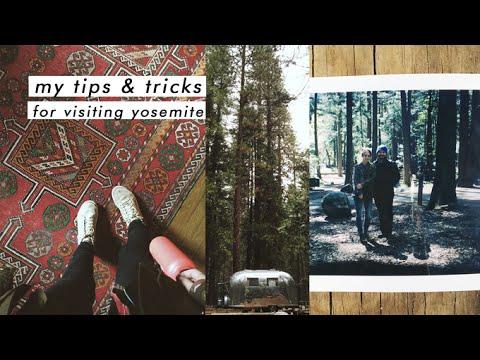 Yosemite! camping tips + things to do