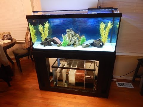 29 gal freshwater sump part 6, THE FINAL BUILD!