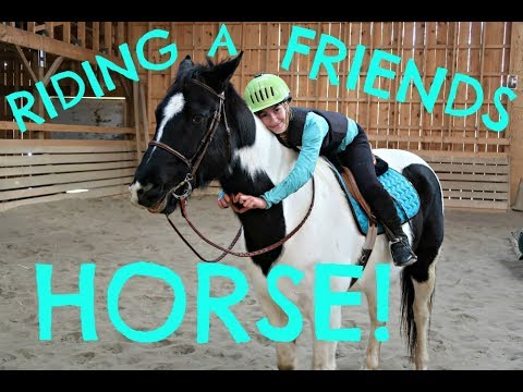 Riding a Friends Horse!