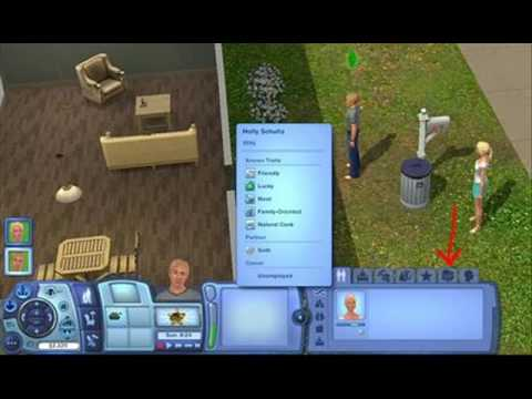 Sims 3 how to make twins or triplets