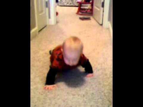 Titus crawling