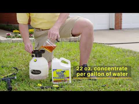 Roof Cleaner How To Video